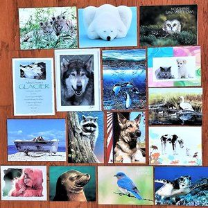 Greeting Cards Blank Inside Nature Animals Set